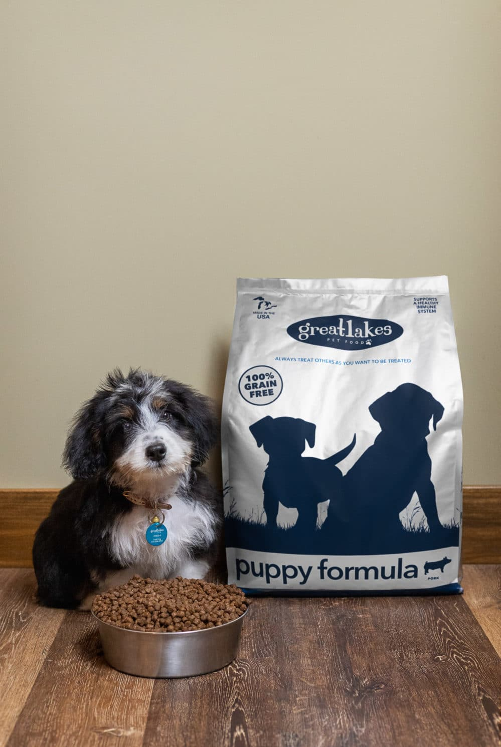 Small dog with Great Lakes puppy formula